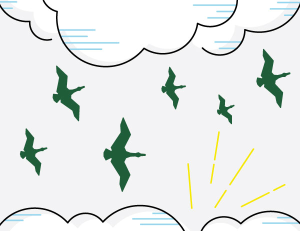 Icon lineart of ducks flying amongst the clouds