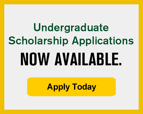 Undergrad Scholarships Now Available