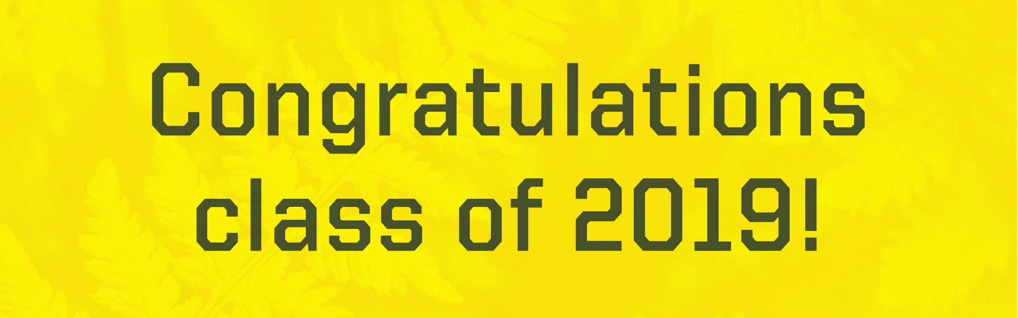 Congratulations Graduates Class of 2019 on a yellow geometric background