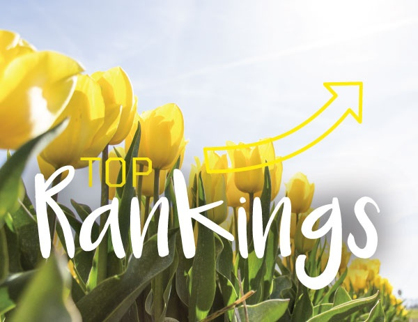 The phrase Top Rankings against a background of yellow tulips