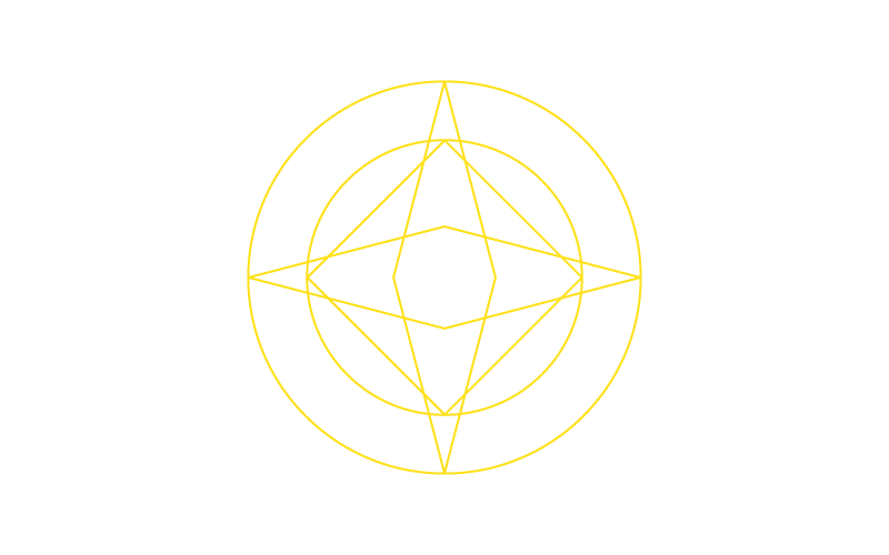 Icon illustrating the advance strategy and leadership specialization showing a circle with four pointed star in the middle