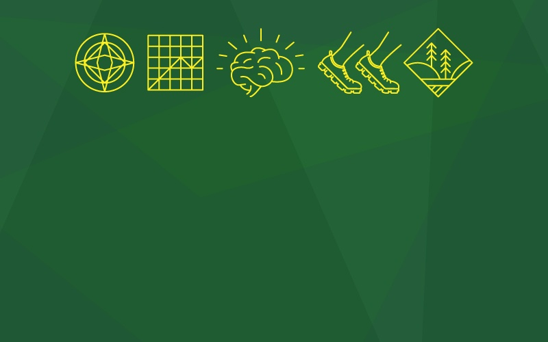 Illustration showing icons for all five UO MBA specializations on a yellow background with geometric patterns