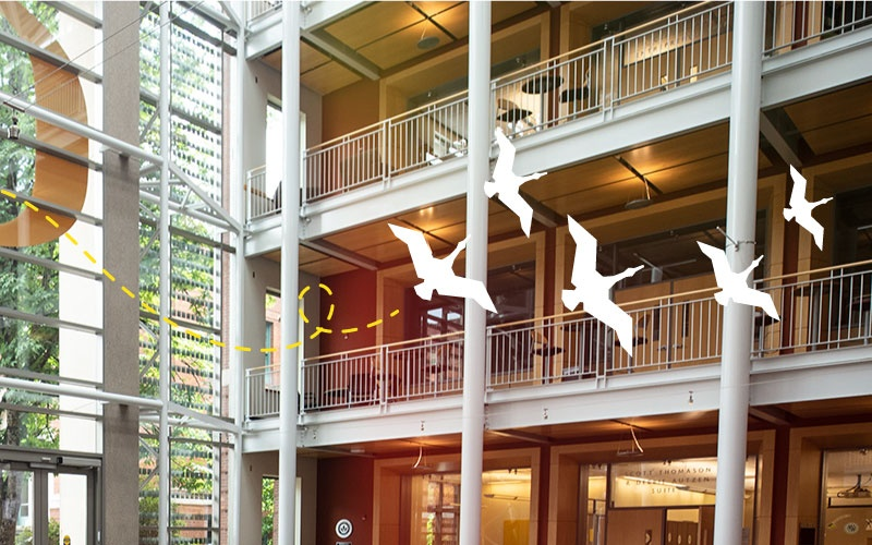 Image of Lillis Business Complex Atrium, looking southwest from inside with Flight School iconography on top fo the image