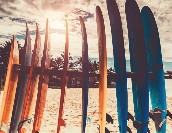 Photo of surfboards positioned upright in the sand