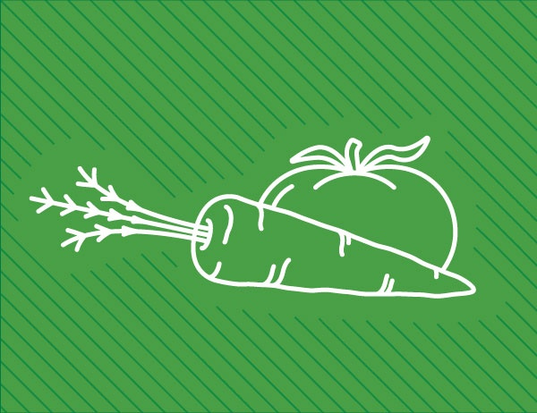 Illustration showing food line art on a green background to represent locally sourced food