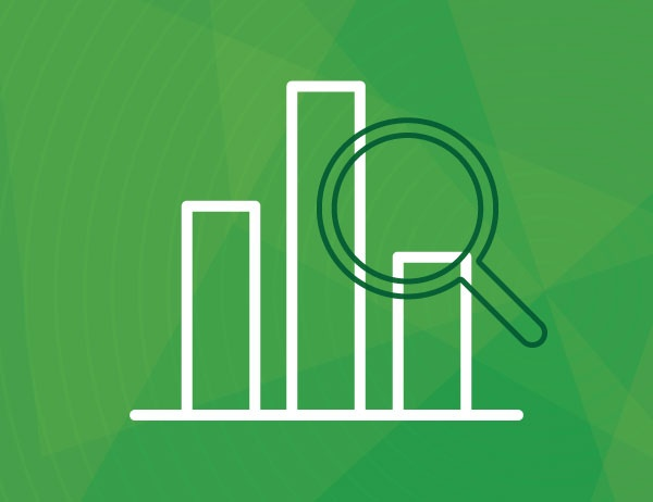 White line art of a bar graph and magnifying glass against a green background