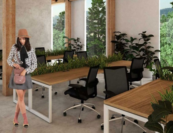 Plan design for a co-working space